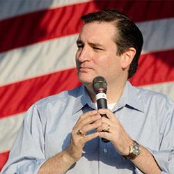 Ted Cruz Tax Reform